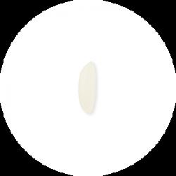 Ponni & Sonna Masoori rice grain
